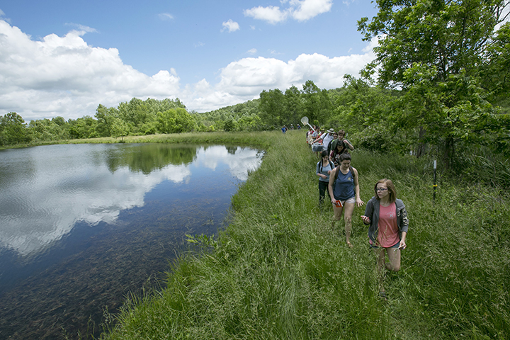 Students collect water and soil samples at the Bohigian Conservation Area during a summer biological science course